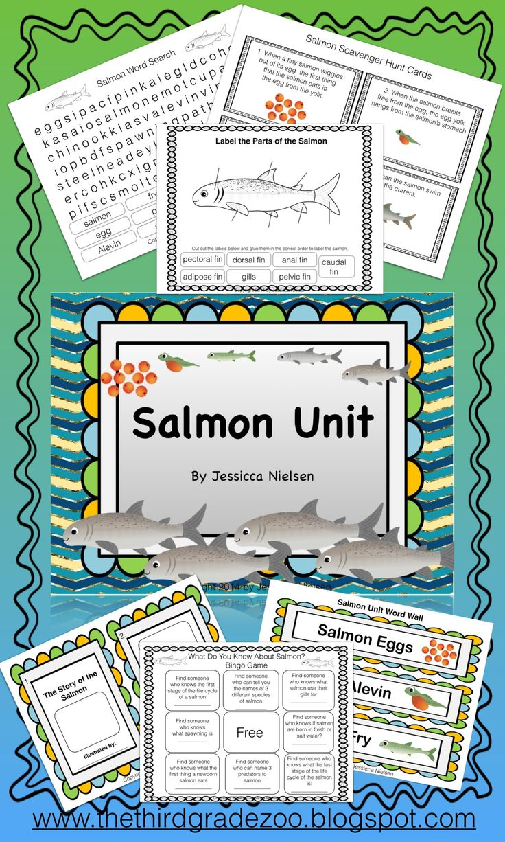 $This salmon unit contains 20 highly engaging and interactive activities including: a make your own salmon life cycle board game, a variety of cutting and pasting activities, and an end of unit quiz.  The learning outcomes of this unit are: To understand the life cycle of a salmon. To label the parts of the salmon. To gain an understanding about the various threats to salmon and their habitats including: over fishing, global warming, pollution and destruction of habitat.