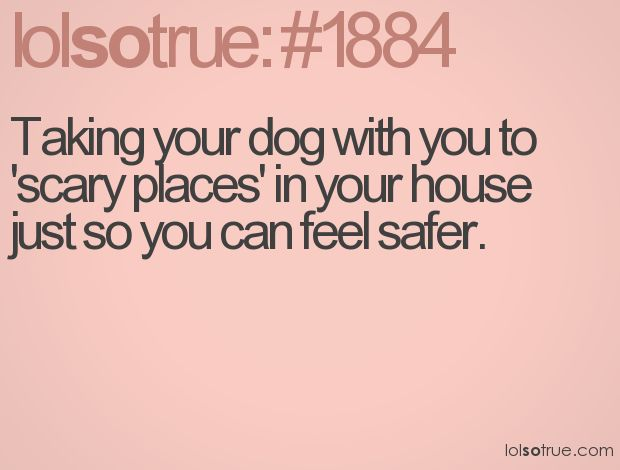 how to keep a dog from marking in the house