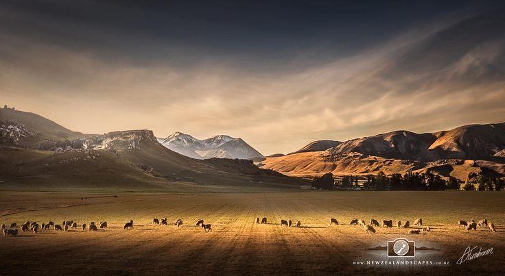 New Zealand Landscape Photo Prints - My Blog