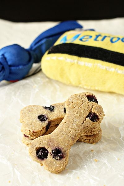 Recipe for homemade peanut butter blueberry dog treats. Make a special treat for your favorite furry friends!