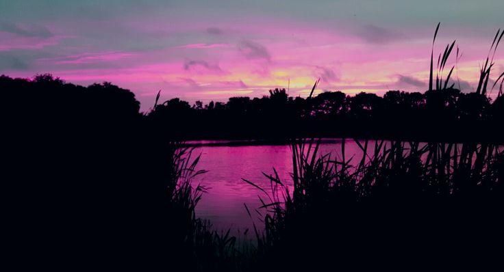 Westland Sunset by Westlandkunst