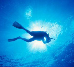 Plongée: retour à Concarneau des explorateurs des abysses arctiques