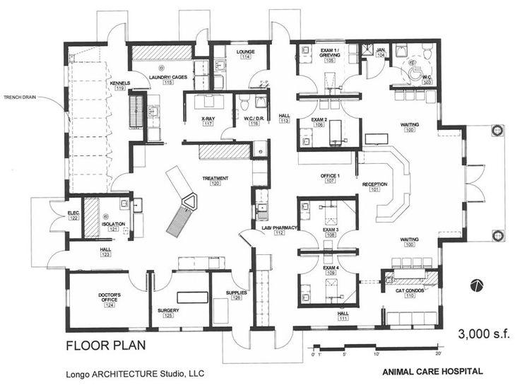 Veterinary Clinic Interior Design Veterinary design on a