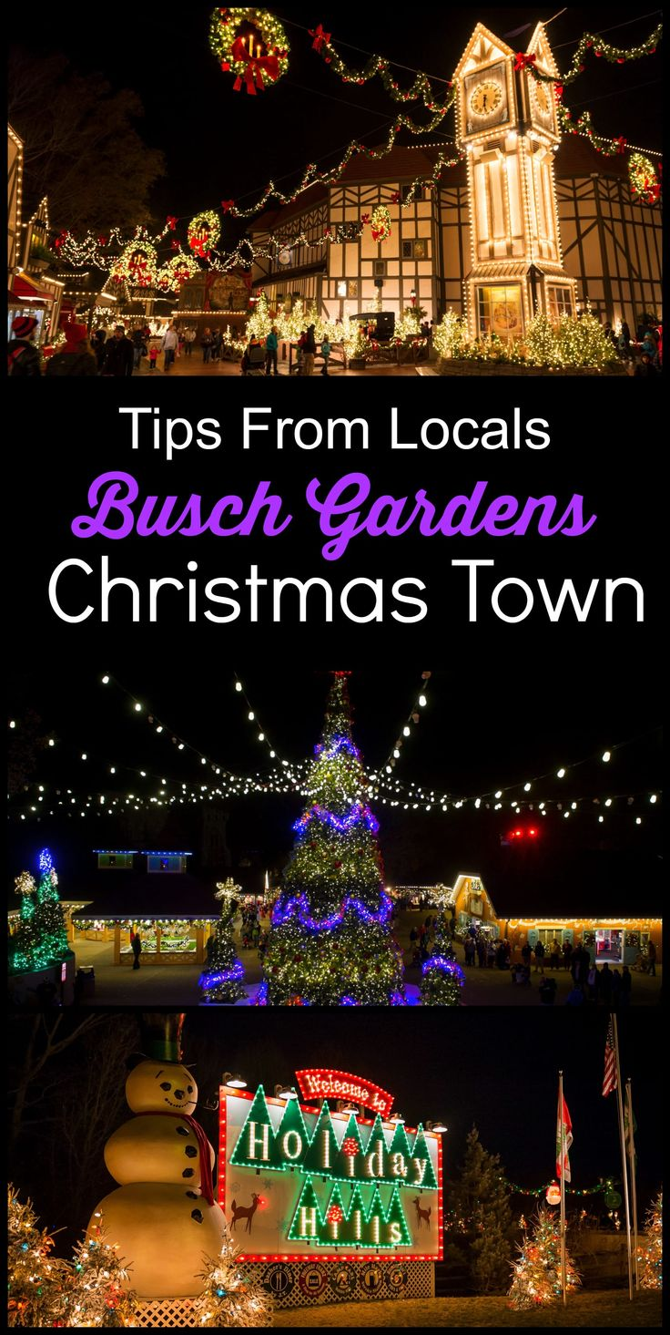 Is Busch Gardens Christmas Town Worth the Cost? Plus Tips