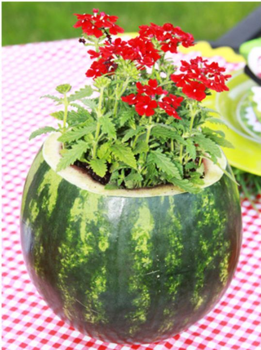 """picknet table decorations   Renee offers a """"how to"""" lesson to make the watermelon napkins- she ..."""