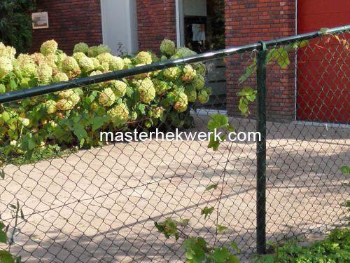 Schuin af laten lopen van gaashekwerk tuinhekken metaal ijzer tuindeur metaal staal tuinhek - Ijzer terras ...