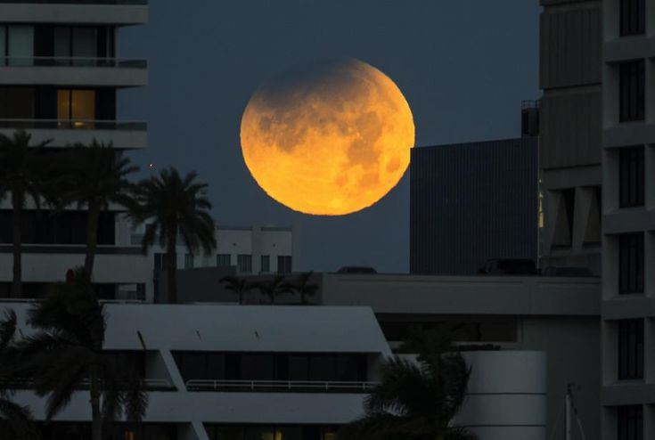 The partially eclipsed moon sets over West Palm Beach Wednesday morning, January 31, 2018. The ‰super-blue-blood-moon was photographed from Palm Beach at 6:53 a.m., when the partially eclipsed moon was in the penubral phase of the event. (Lannis Waters / The Palm Beach Post)