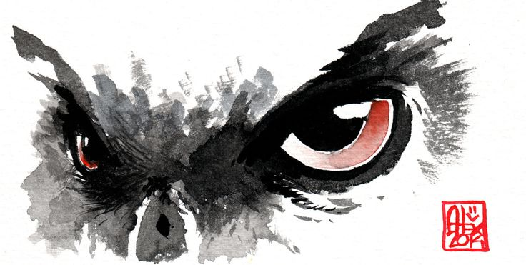 owl aquarell - Google keresés