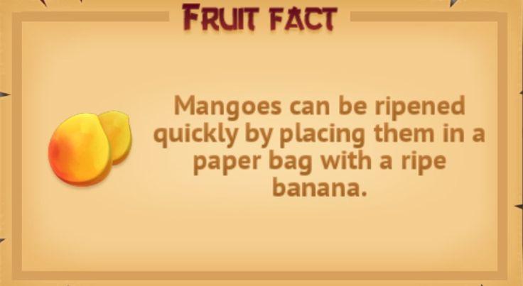 Fruit fact #4