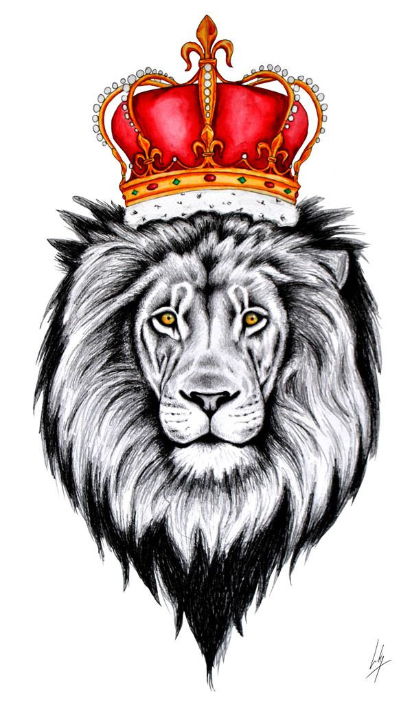 lion with crown drawing - Google Search | Tattoos Inspo ...