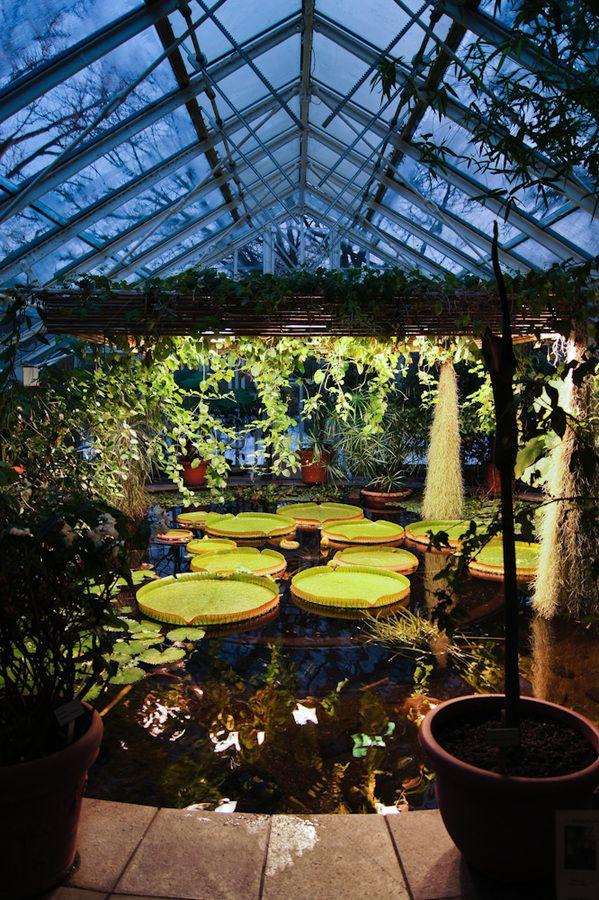 The Oslo Botanical Garden - Norway