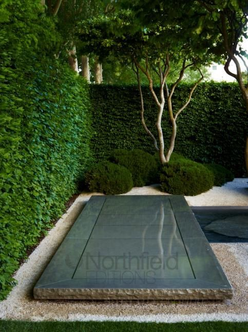 [CasaGiardino]  ♡  polished granite pavers with hammered edge detail does duty as a reflecting glass for the tree