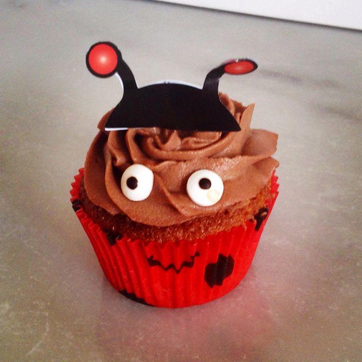 Bug Cake Au Chocolat
