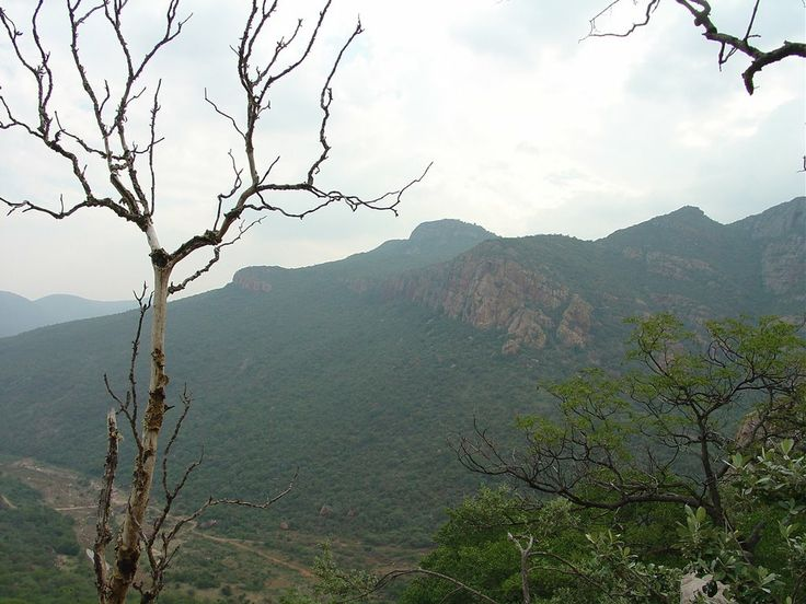 lesheba south africa | Panoramio - Photo of View from Soutpansberg