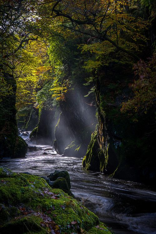 Fairy Glen, Conwy, País de Gales