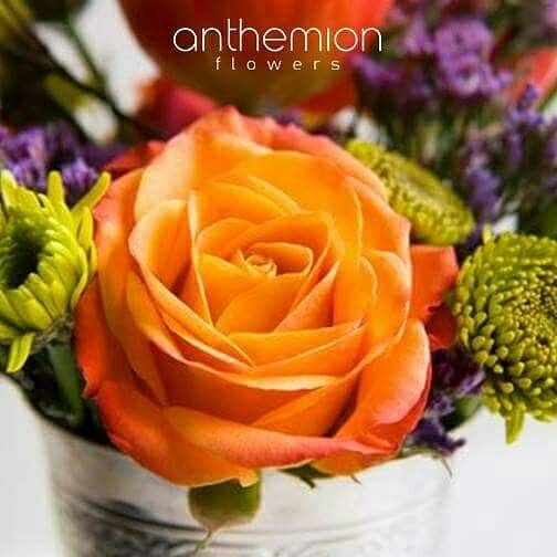 Καλό Πάσχα,  Happy Easter, #easter_flowers #flowershop #fresh_flowers #grrece_flowers #roses #anthemionflowers #αποστολη #λουλουδιων #ανθοπωλείο #send_flowers_athens