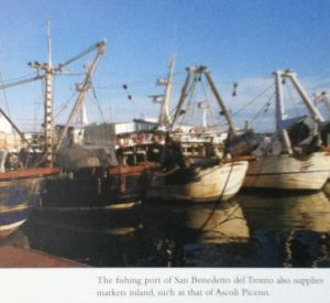 Food Fridays: Fishing port of San Benedetto del Tronto