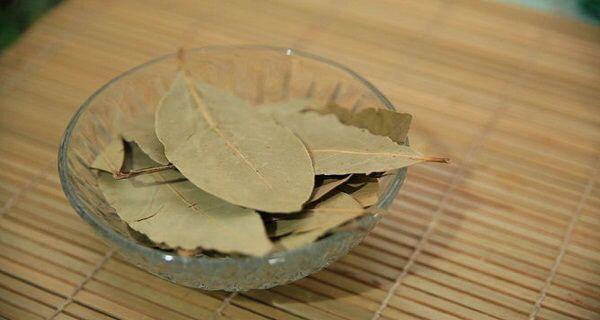 Brûler les feuilles de laurier à la maison ! les effets Incroyables 17 février 2016