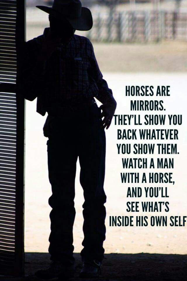 Horses are mirrors