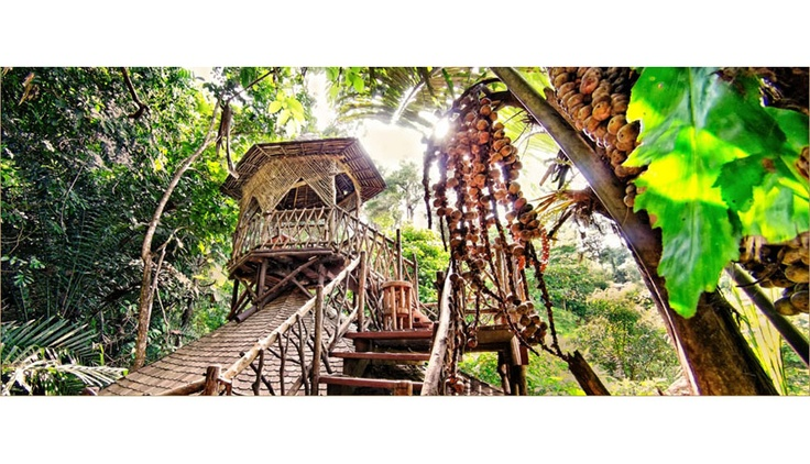 Treehouse Weddings at Bunga Raya Island Resort & Spa »