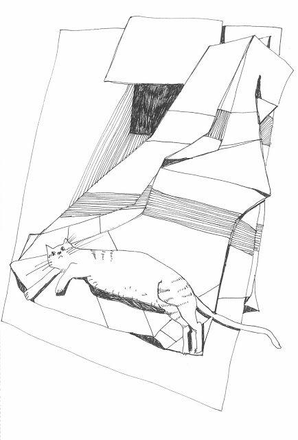 repozytornia: koci kocyk