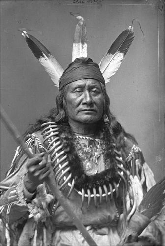American Indian Man in Native Dress with Peace Medal, Bear Claw Necklace and Ornaments and Holding Fan n.d