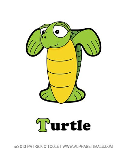 VTech Touch & Teach Turtle - Walmart.com