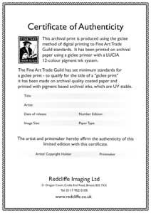 Examples of certificates on the back of original art for Limited edition print certificate of authenticity template