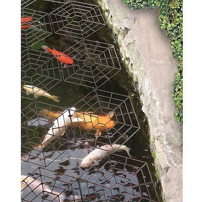 Best 25 pond covers ideas on pinterest fish pond for Koi pond maine coon cattery