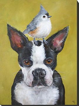The Friendly Animals Vicki Sawyer