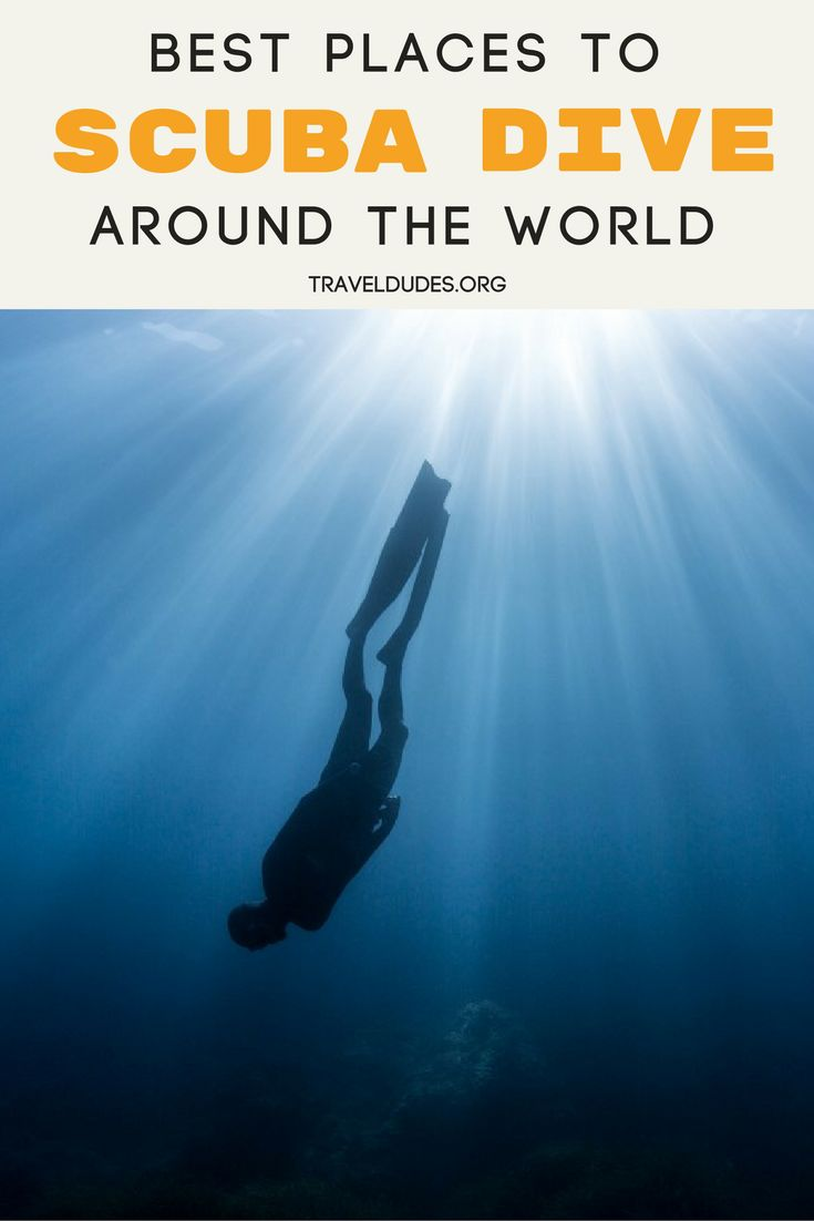Scuba divers know, the world is full of epic dive sites and locations. This guide serves as the ultimate scuba diving bucket list and includes all of the best spots to go diving around the world, from Sharm el-Sheikh in Egypt to Deep Water Cay in the Bahamas. Adventure travel. Travel Dudes Social Travel Community #Scuba #Diving