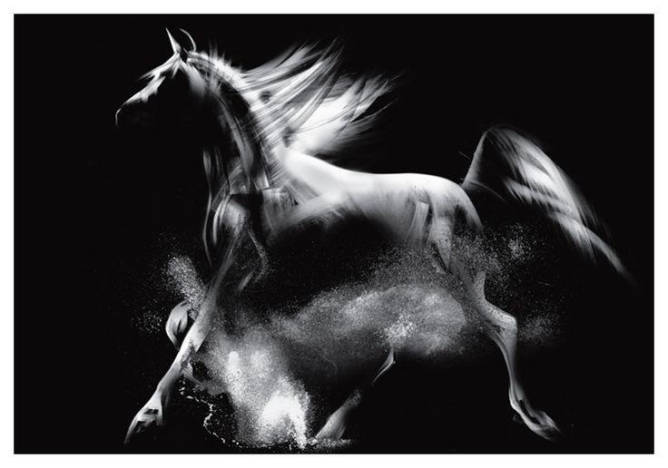 koń 2 - seria wiedenska - Nowoczesne obrazy do salonu, obrazy na płótnie