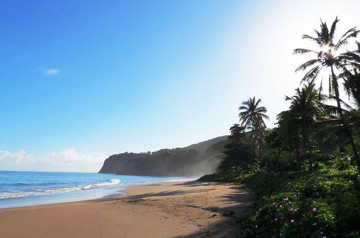 Guadeloupe, Karibien - Langley