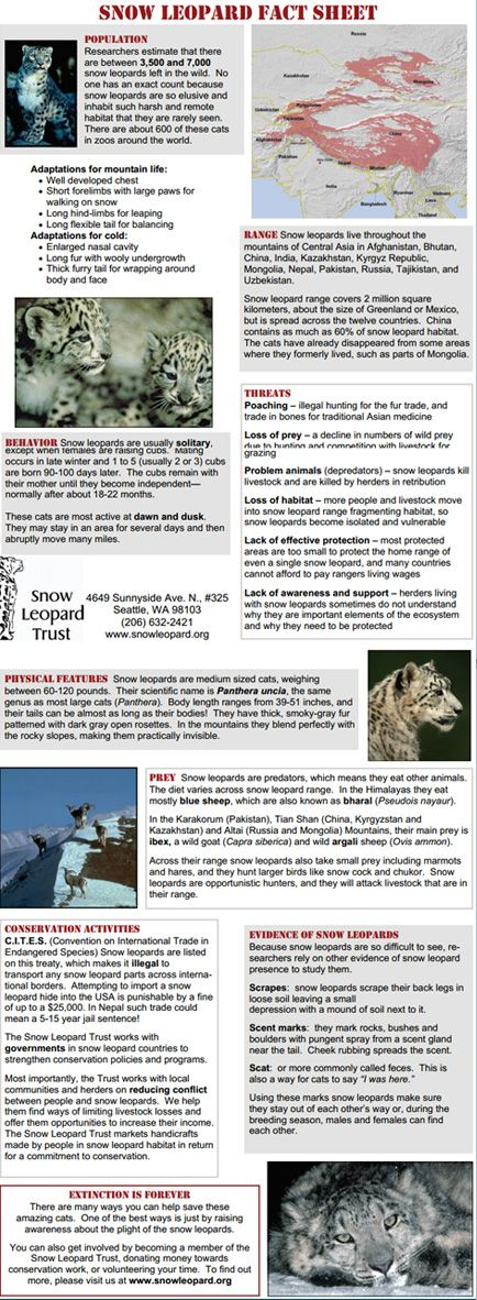 Snow Leopard Fact Sheet. Much more information on the site: http://www.snowleopard.org/learn/cat-facts