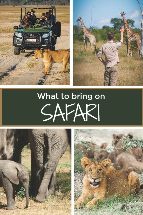 If you're going on an African safari you will definitely want to check out these things to wear!