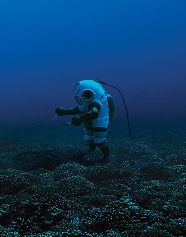75 best Dr Sylvia Earle images on Pinterest Clarks, Maps and - marine biologist job description