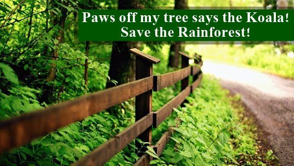 heart-touching-sayings-and-slogans-on-save-environment-8