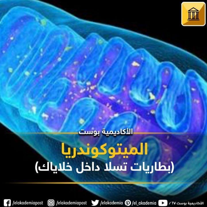 الميتوكوندريا بطاريات تسلا داخل خلاياك بصرف النظر عن خلايا الدم الحمراء تحتوي جميع الخلايا في الجسم على ميتوكوندريا واحدة أو Lockscreen Lockscreen Screenshot