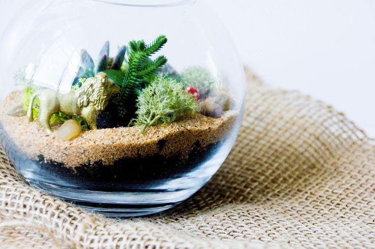 Minimal Succulent Glass Bowl | Lime Tree Bower | Sydney Australia
