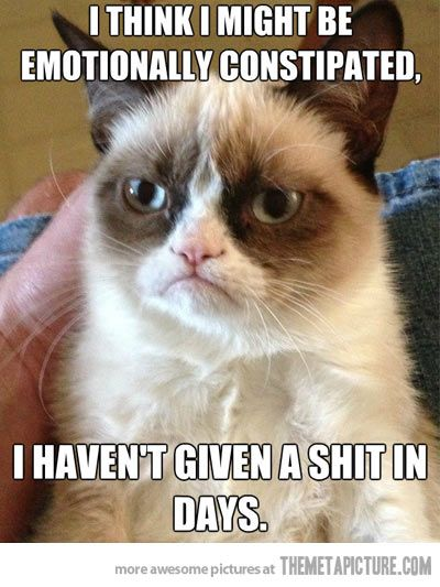 I think I might be emotionally constipated. I haven't given a shit in days. Funny, hilarious, LOL, humor, grumpy cat, picture, photo)