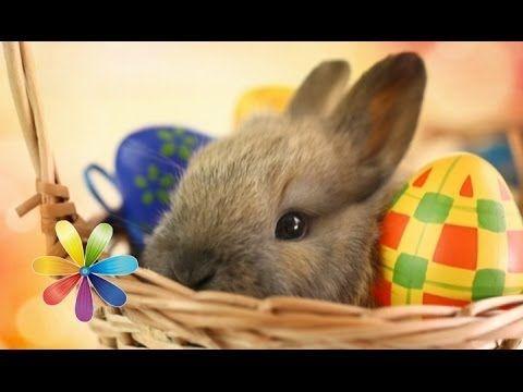 Немецкий кулич и пасхальный заяц - Рецепт от Все буде добре - Выпуск 375 - 16.04.14 - YouTube