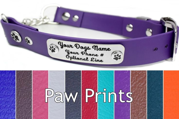 Biothane Martingale Dog Collar ~ Waterproof, Durable, Comfy, and Secure ~ Optional NamePlate