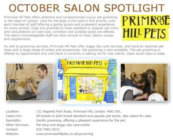 Salon Spotlight October 2012, Primrose Hill Pets