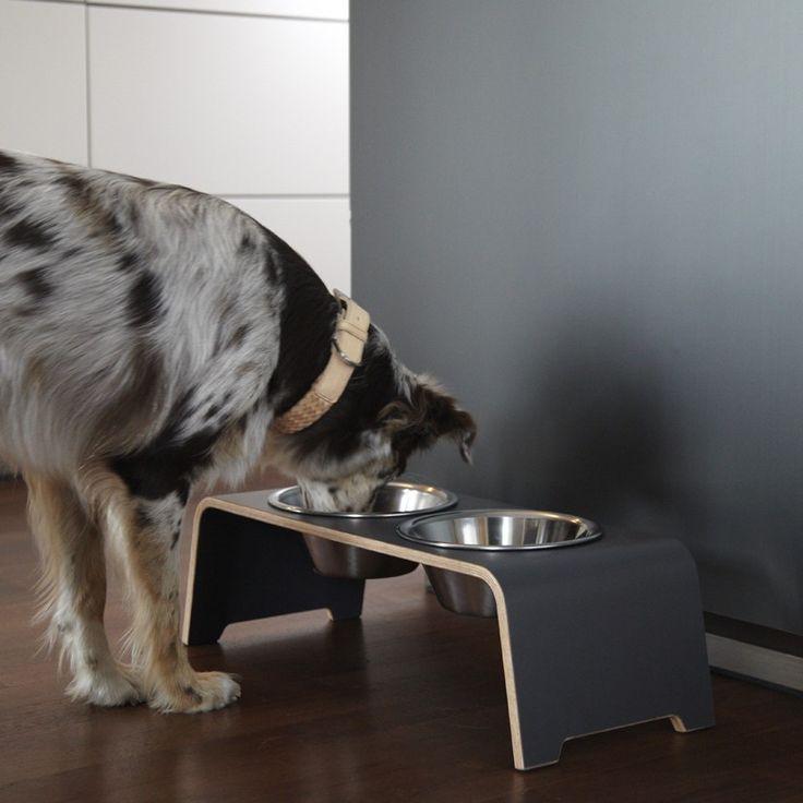 DOGBAR LAMINATE GREY http://www.coco-pei.com/it/dogbar-laminate-grey.html  Per gli amanti del design!  Una ciotola per cani con struttura molto stabile, ciotole in acciaio inox removibili - una forma studiata appositamente per assumere una posizione corretta durante il pasto.  #dogs #dog #dogaccessories #bowls #bowl #dogbowls #cocopeicom #cocopei