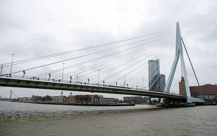 Rotterdam Blog