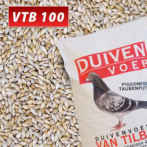 VTB_100