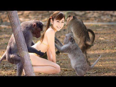 monkey sex with brasilian girls