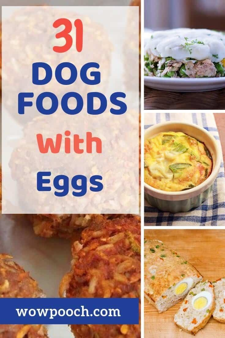 Dog Food Recipes With Eggs In 2020 Dog Food Recipes Easy Dog Treat Recipes Healthy Dog Food Recipes