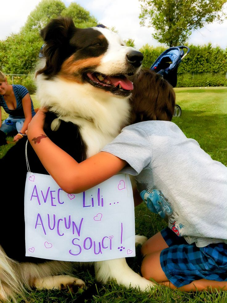 Australian Shepherd-Love-kid ❤  Lili therapy dog! Summer 2013 ❤ Animal assisted therapy, Berger Australien. - With Lili, no worries!-