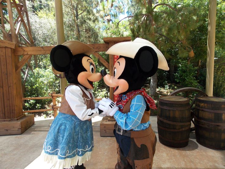 Disney World characters in legal trouble